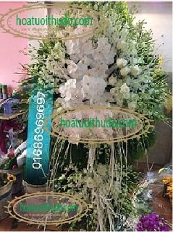 lẵng hoa lan trắng tại số 5 trần thánh tông